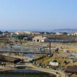 38年間生活してきた私がオススメ!子供連れで行きたい神奈川県の穴場観光地